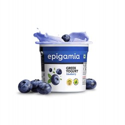 EPIGAMIA GREEK YOGURT BLUEBERRY 90G